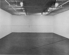 Two horizontal lines stretch from one end of a room to the other in this black-and-white image: one near the ground and the other midway between the floor and ceiling.