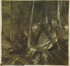 Shattuck, Sunlight in Depth Forest, 1861