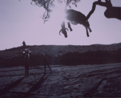 Moffatt-Up-in-the-Sky,-1996-photograph